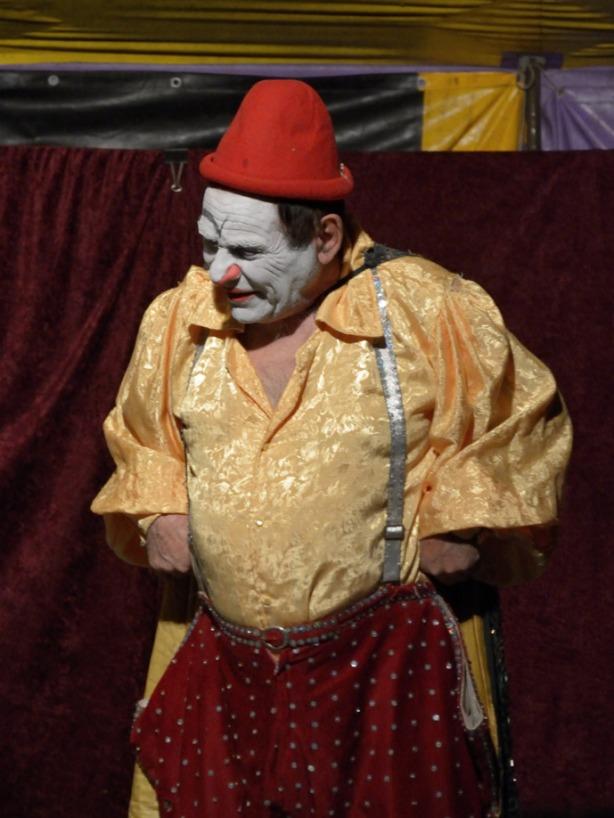 Hermanos-Videla-Encuentro-Circo-San-Fernando-2014-(3)