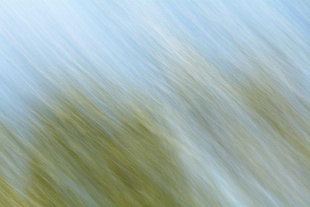 Paisaje-plastico-(13)_web